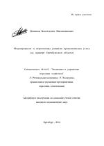 Формирование и перспективы развития промышленных узлов тема  Формирование и перспективы развития промышленных узлов тема автореферата по экономике скачайте бесплатно автореферат диссертации